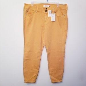 NWT Torrid 24R Mustard Yellow Jegging Jeans Pants